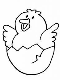 colorear polluelo dibujos dibujo de pollito para