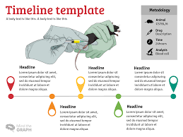 Infographic Website Template Infographic Template Infographic Layout Mind The Graph