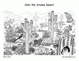 Small Picture Awesome Desert Coloring Pages Gallery Coloring Page Design
