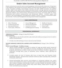 Account Manager Resume Samples Davidkarlsson