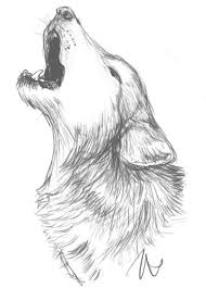 Drawn Wolf Wolf Drawing Idea Drawings Wolf Sketch Drawings Sketches