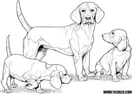 Small Picture Doberman Puppy Coloring Pages Coloring Pages