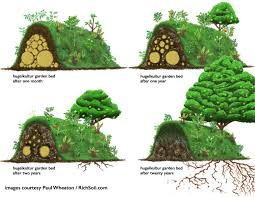 building a raised bed garden. HugelkulturRaisedBed Building A Raised Bed Garden -