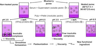 Study Of The Interactions Between Pectin In A Blueberry