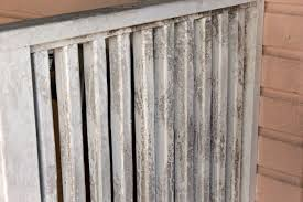 How To Get Rid Of Bathroom Mold Fascinating How To Get Rid Of Mold