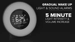 gradual wake up light sound