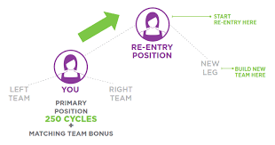 Isagenix Review Pay Structure Compensation Plan Breakdown
