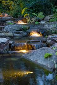 Koi pond lighting ideas Backyard Paynejacksonville160resize Recognizealeadercom Led Pond Lighting Premiere Aquascapes