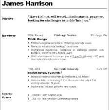 Cosmetologist Resume Fascinating Cosmetology Resume Skills For Cosmetologist Sample Instradentus