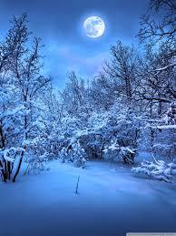 Cold Winter Nights - 768x1024 ...