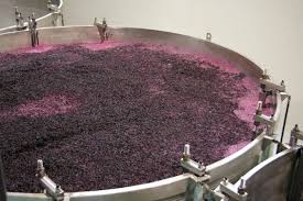 Image result for fermentation process