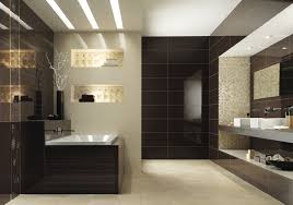 Modern Bathroom Colors  Home Ideas