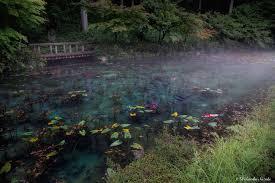 monet s pond
