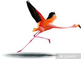 flying flamingo wall mural pixers