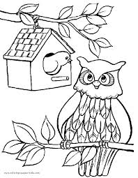 Small Picture 224 best Party Ideas images on Pinterest Owl coloring pages