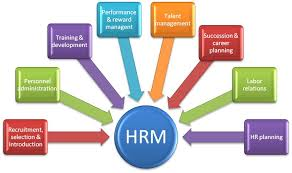 human resource management hrm human resource management