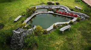backyard and garden pond designs and ideas