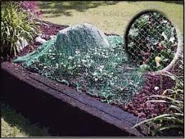 bird netting for garden. Fine Garden Intended Bird Netting For Garden R