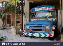 montu express bus transport display at busch gardens florida usa