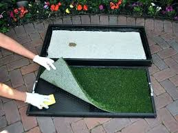 inspirational patio dog potty or pet for toy choosing the best of area diy elegant outdoor potty area dog