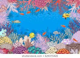 Aquarium Background Pictures Royalty Free Aquarium Background Images Stock Photos Vectors