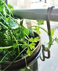 diy window herb garden supplies