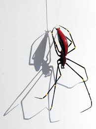 Papuan Orb Weaver Spider redux, glass spider by Wesley Fleming | Insect  art, Bug art, Blown glass art