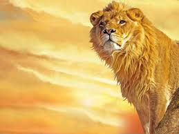 wallpapers for lion wallpaper desktop