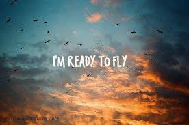 Dream To Fly Quotes Best Of Amazing Lucy Beautiful Birds Amanecer Image 24 On Favim