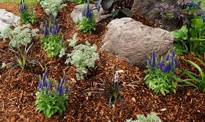 garden mulch. Mulch Is Material Placed Over The Soil Surface To Maintain Moisture And Improve Conditions. Mulching One Of Most Beneficial Things You Can Do Garden