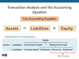 the basic accounting equation is quizlet tessshlo