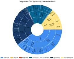 sunburst charts treemap and sunburst charts in sql server reporting services