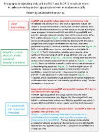 Start studying brit lit unit 3 imrad. Imrad Example Page 1 Line 17qq Com