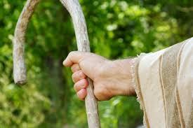 Resultado de imagem para Há Pastores dados por Deus...Outros são Fabricados!