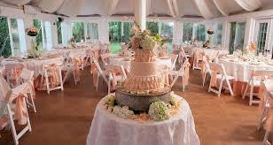 Peach and Cream Theme Wedding Ideas