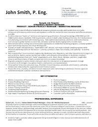 Key Words For Resume Template Gorgeous Vp Engineer Resume Product Development Resume Technical Resume Key