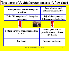 Chemotherapy And National Drug Policy In Malaria