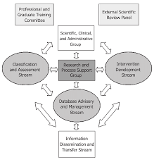 Organizational Structure Of The Canadian Institutes Of