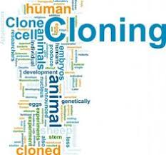 land pollution for humans and nature  human cloning for and against essay argument against human cloning essays the idea of cloning humans has always stirred debate raising moral and ethical