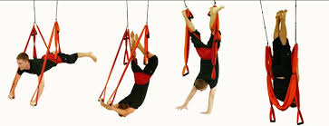 Yoga Inversion Swing Yoga Trapeze I Might Just Invest In