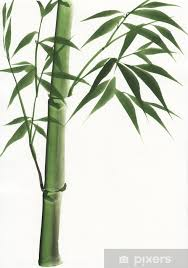 watercolor painting of bamboo vinyl wall mural art and creation