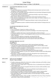 Process Analyst Sample Resume Business Process Analyst Resume Samples Velvet Jobs 1