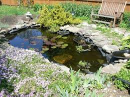 Small Picture Backyard Small Water Garden With Large Falls Moss Fieldstone And