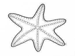 25 Bladeren Kleurplaten Zeedieren Mandala Kleurplaat Voor Kinderen