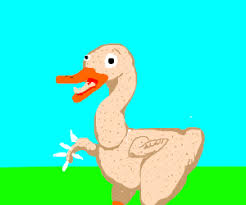 featherless duck. Plain Duck A Featherless Duck With One Wing W Feathers Intended Featherless Duck