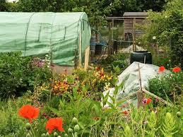 large vegetable garden design