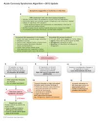 Part 9 Acute Coronary Syndromes Ecc Guidelines