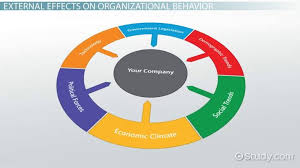 What Is Organizational Behavior External Effects On Organizational Behavior