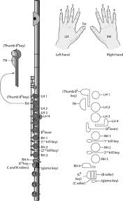 Flute For Dummies Cheat Sheet Dummies