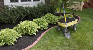 garden bed edging ideas you ll want to